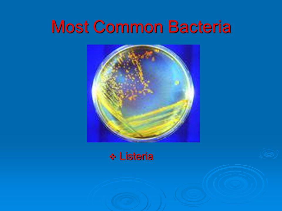 Most Common Bacteria  Listeria