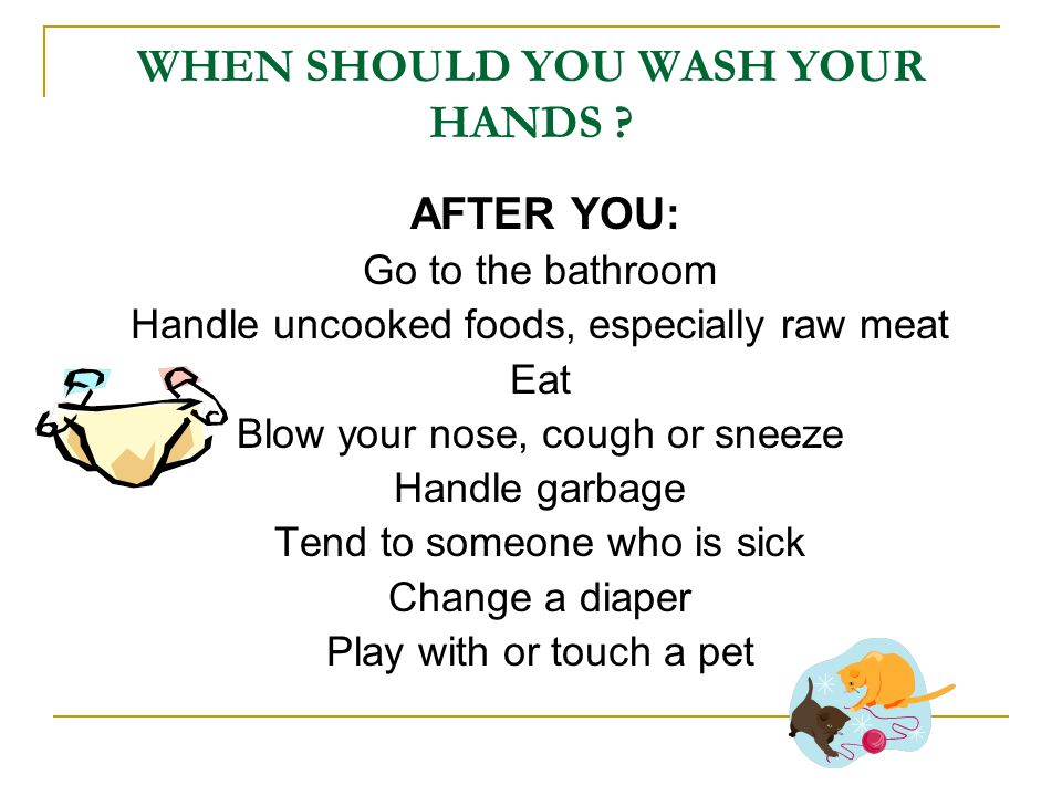 WHEN SHOULD YOU WASH YOUR HANDS .