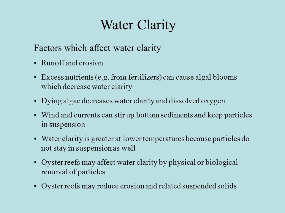 Water Clarity Factors which affect water clarity Runoff and erosion Excess nutrients (e.g.