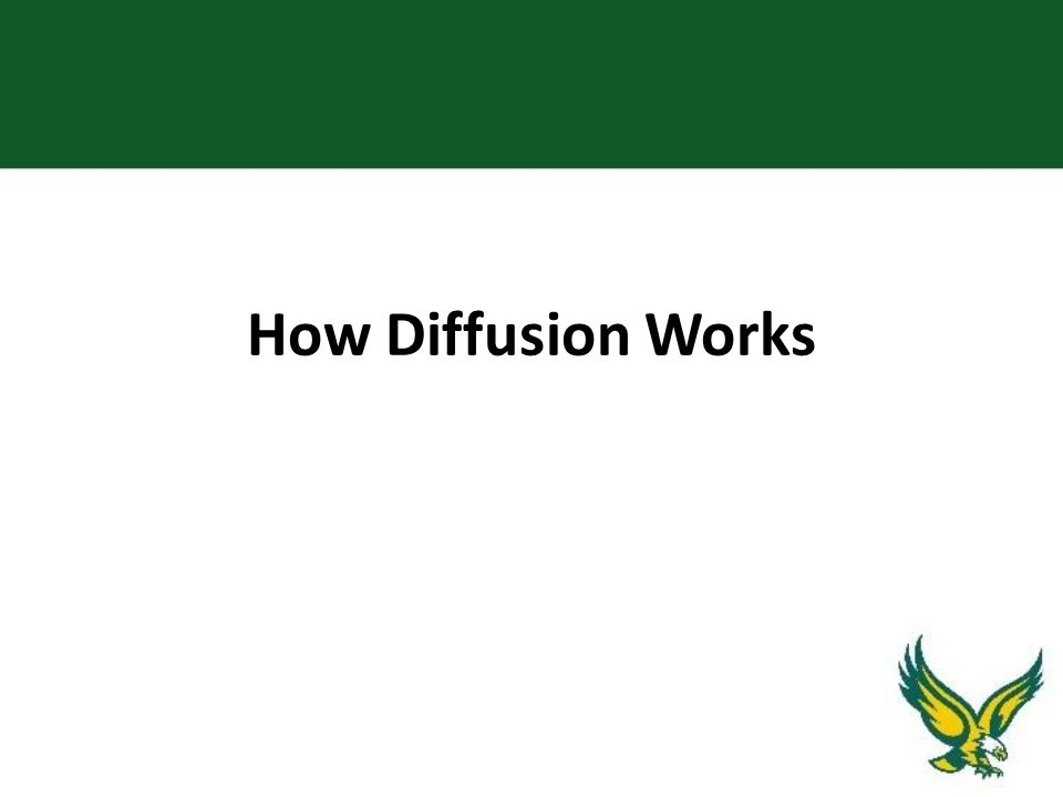 How Diffusion Works