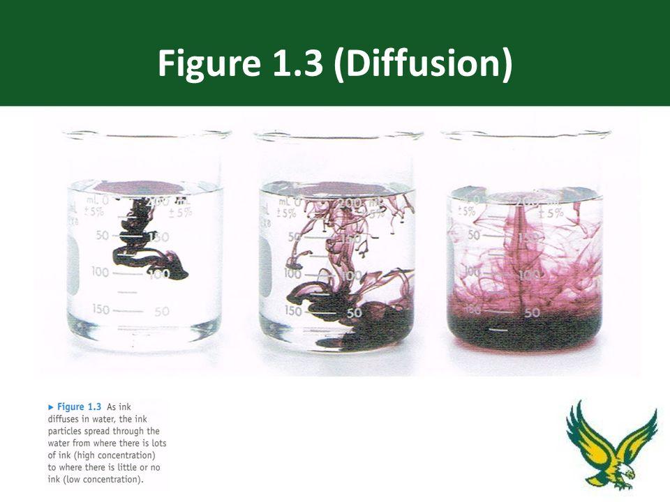 Figure 1.3 (Diffusion)
