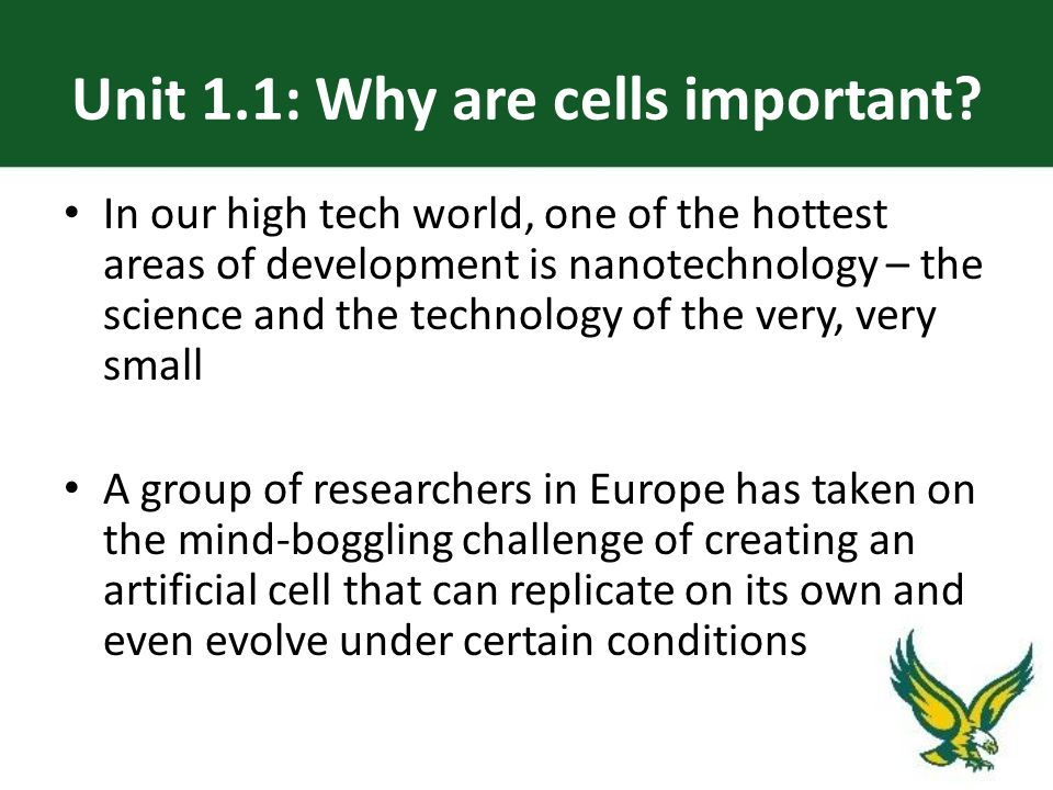 Unit 1.1: Why are cells important.