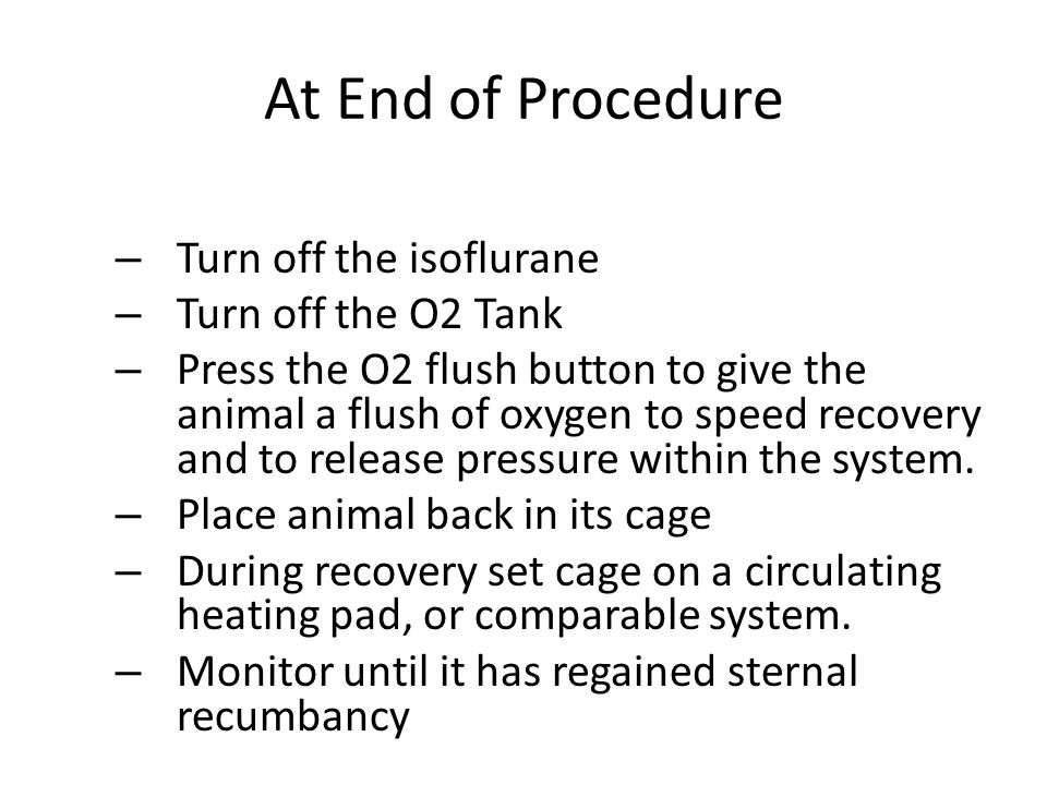 At End of Procedure – Turn off the isoflurane – Turn off the O2 Tank – Press the O2 flush button to give the animal a flush of oxygen to speed recover