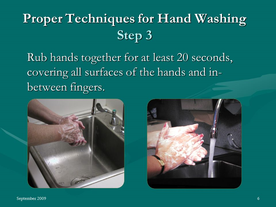 September 20096 Proper Techniques for Hand Washing Step 3 Rub hands together for at least 20 seconds, covering all surfaces of the hands and in- between fingers.