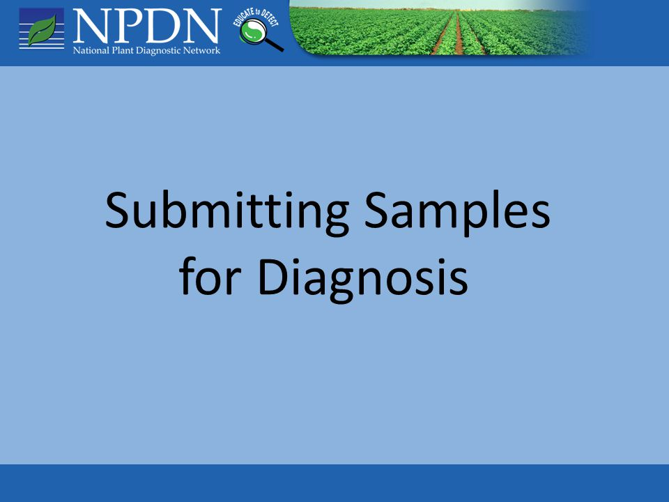 Sample Security Communication: Early contact with diagnostic labs and regulatory officials Delivery details: Where, How, When Confidentiality Accuracy of source data Chain of custody