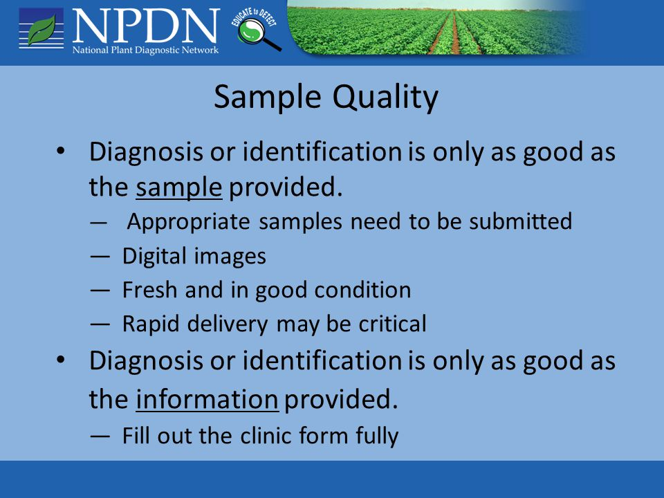 Samples Should Contain ALL Plant Parts Photo credit: PowerPoint clipart Foliage diseases Root problems Lesions / Damage on stem?