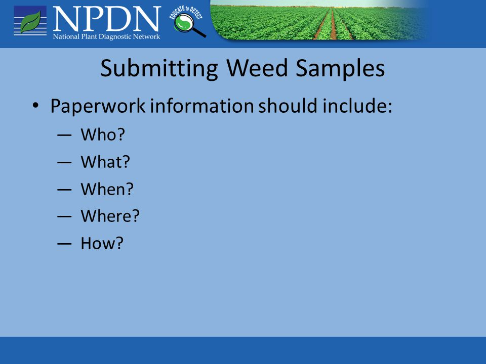 Submitting Weed Samples Paperwork information should include: ―Who ―What ―When ―Where ―How
