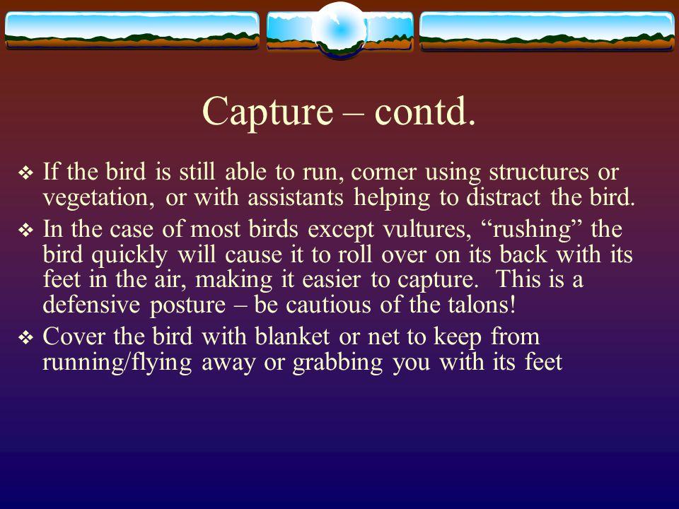 Capture – contd.