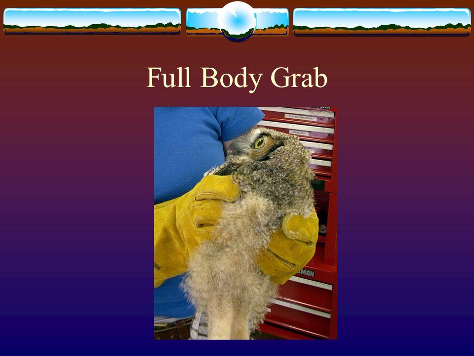 Full Body Grab