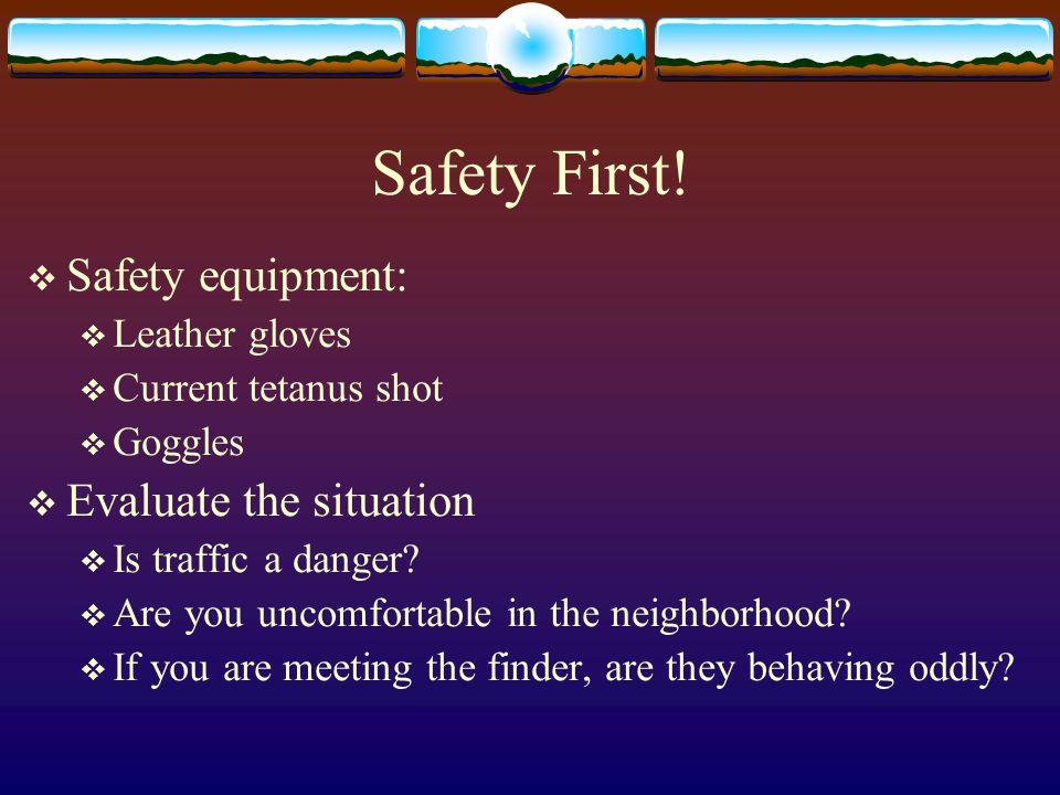 Safety First!  Safety equipment:  Leather gloves  Current tetanus shot  Goggles  Evaluate the situation  Is traffic a danger?  Are you uncomfor