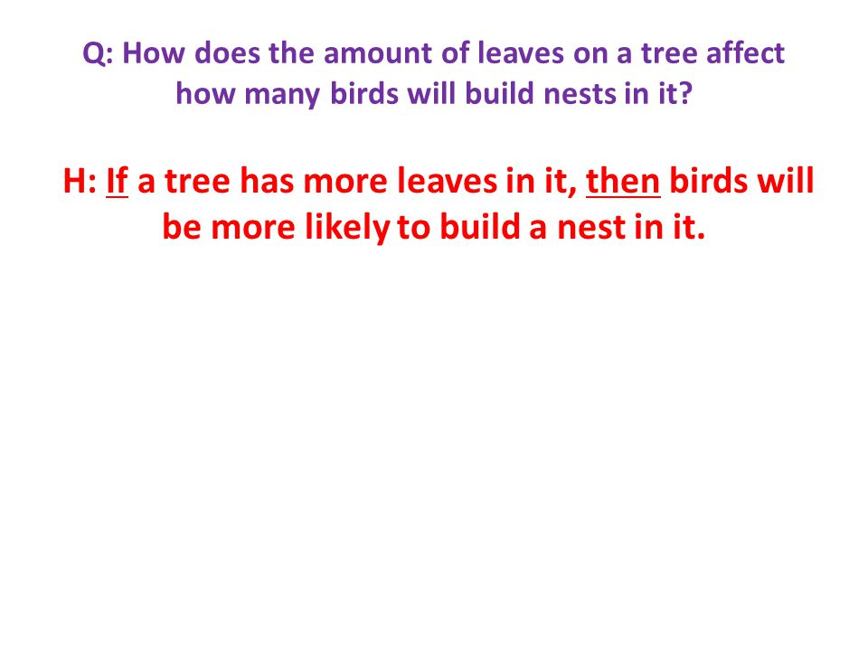 Q: How does the amount of leaves on a tree affect how many birds will build nests in it.