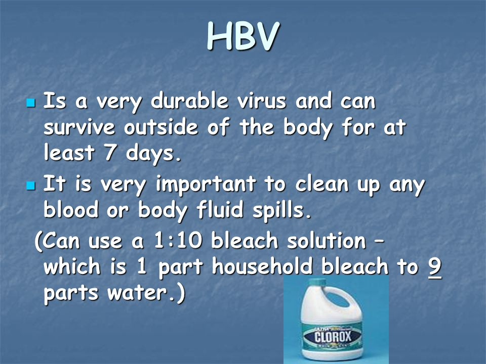 HBV Is a very durable virus and can survive outside of the body for at least 7 days.