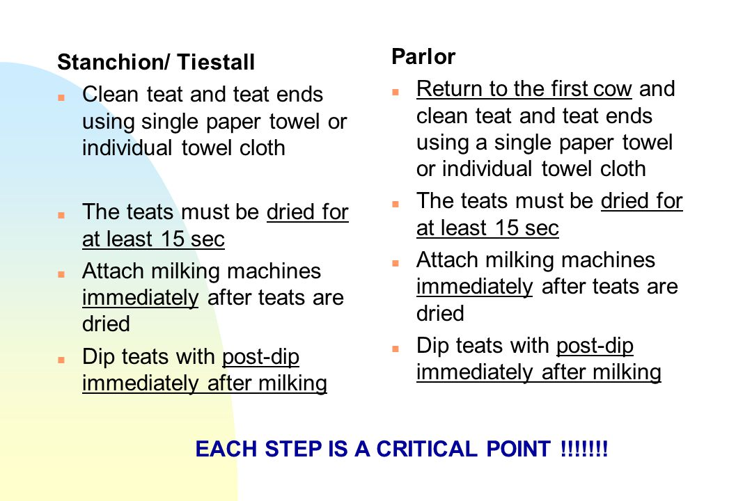 Stanchion/ Tiestall n Clean teat and teat ends using single paper towel or individual towel cloth n The teats must be dried for at least 15 sec n Atta