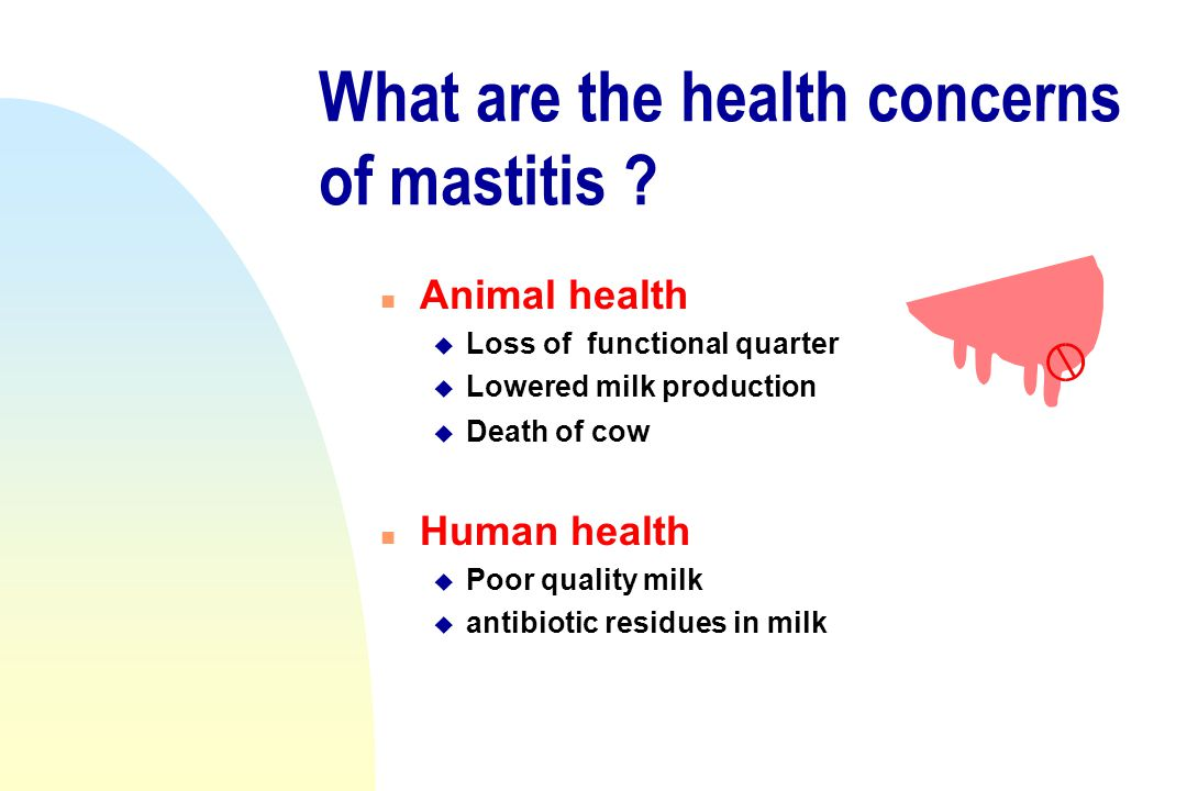 What are the health concerns of mastitis ? n Animal health u Loss of functional quarter u Lowered milk production u Death of cow n Human health u Poor