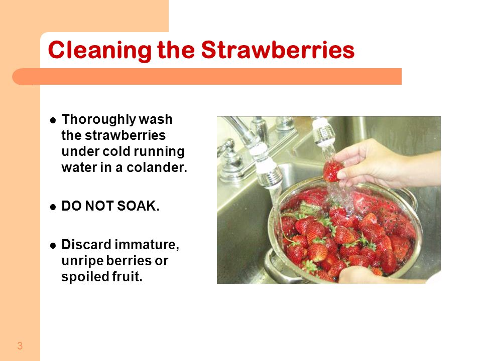 3 Cleaning the Strawberries Thoroughly wash the strawberries under cold running water in a colander.