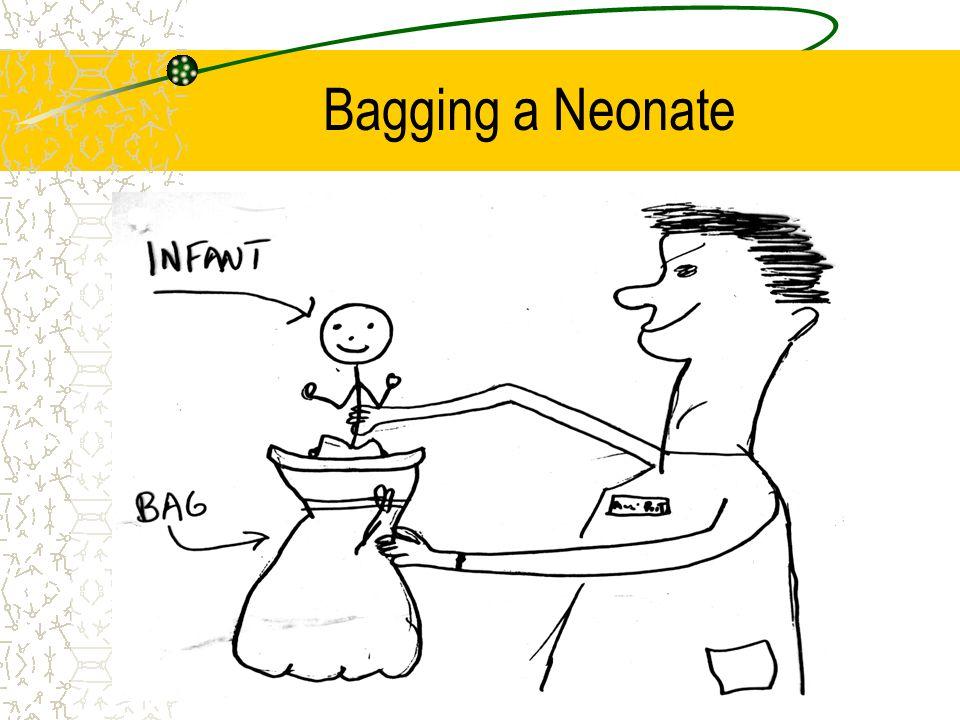 Bagging a Neonate