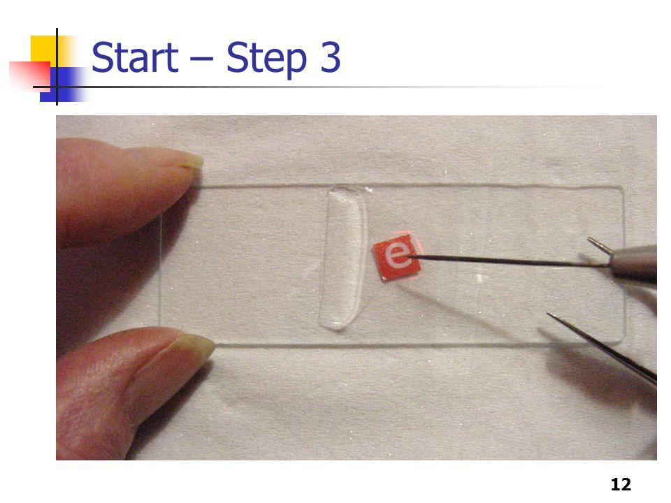12 Start – Step 3