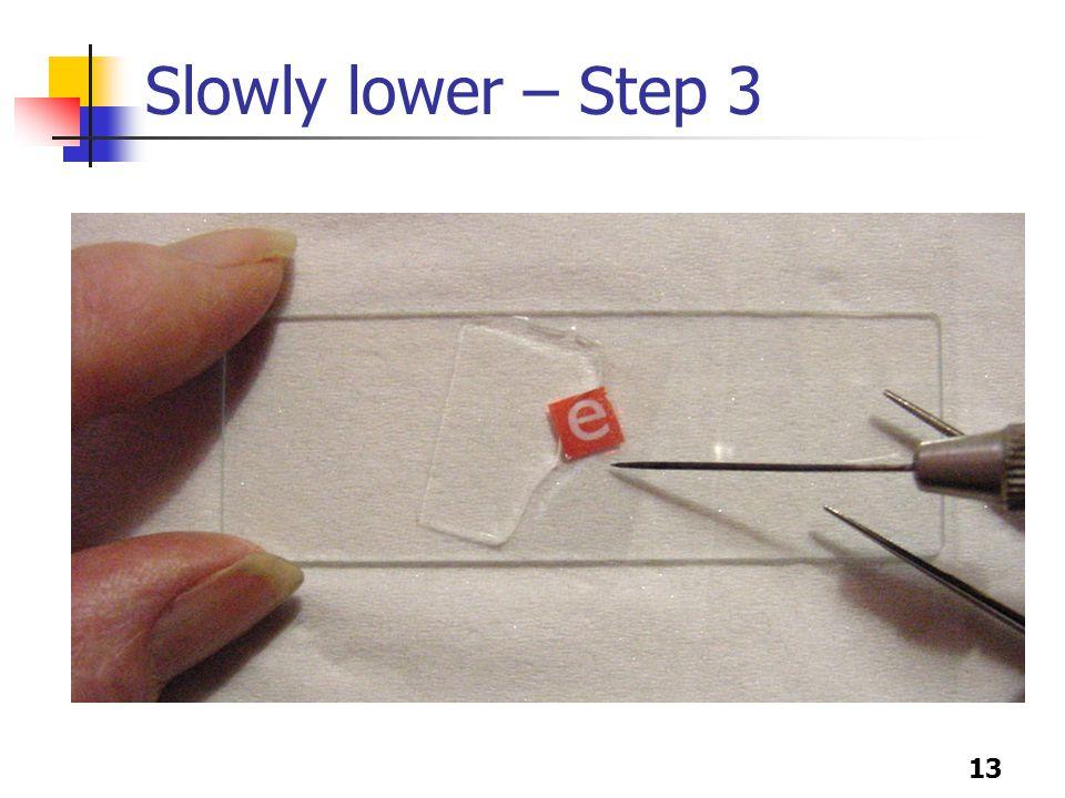 13 Slowly lower – Step 3