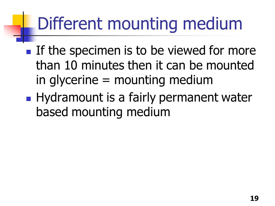 19 Different mounting medium If the specimen is to be viewed for more than 10 minutes then it can be mounted in glycerine = mounting medium Hydramount is a fairly permanent water based mounting medium