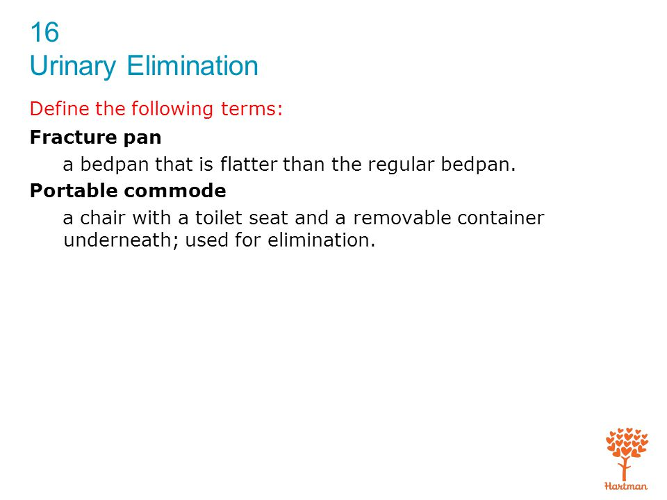 16 Urinary Elimination 3.