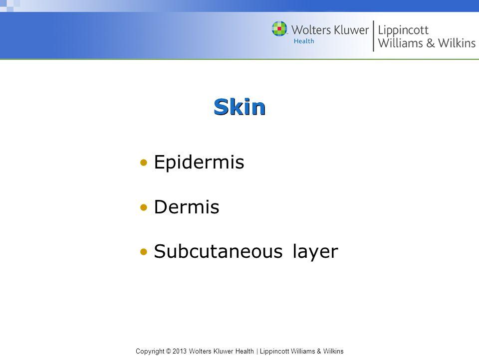 Copyright © 2013 Wolters Kluwer Health | Lippincott Williams & Wilkins Epidermis Dermis Subcutaneous layer Skin