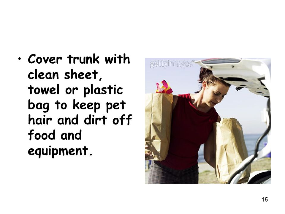 Cover trunk with clean sheet, towel or plastic bag to keep pet hair and dirt off food and equipment.