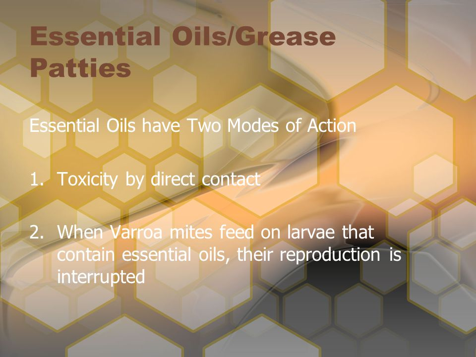 Essential Oils/Grease Patties Essential Oils have Two Modes of Action 1.Toxicity by direct contact 2.When Varroa mites feed on larvae that contain essential oils, their reproduction is interrupted
