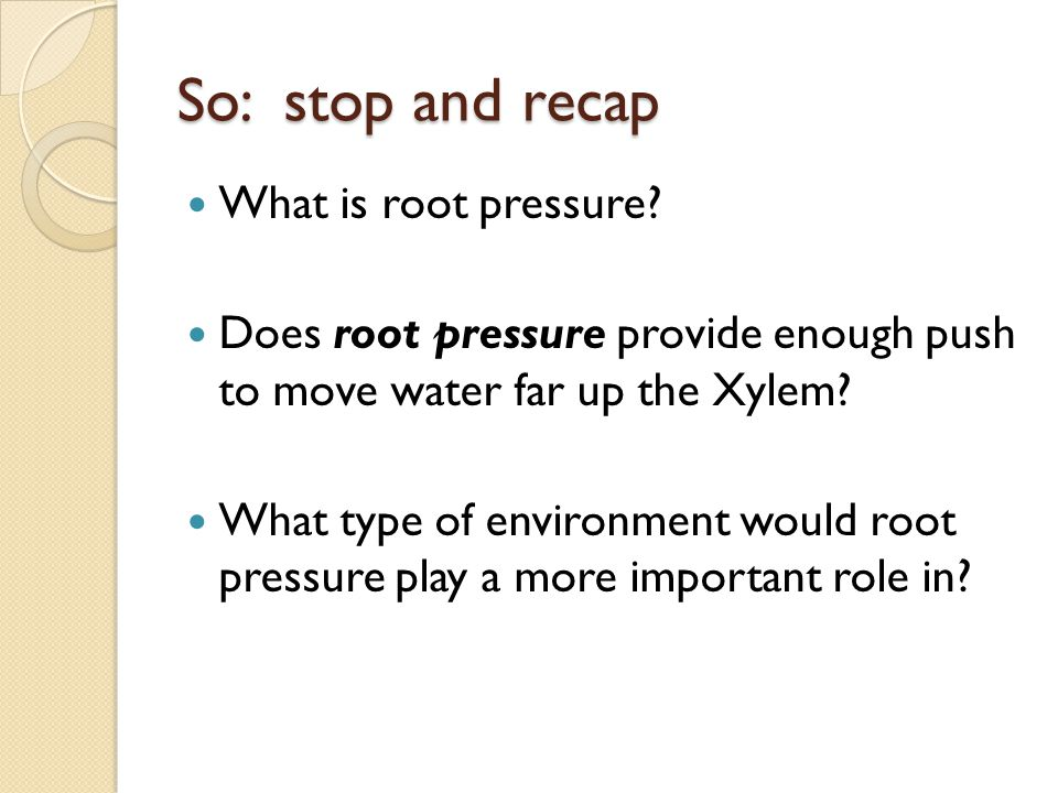 What is root pressure? Does root pressure provide enough push to move water far up the Xylem? What type of environment would root pressure play a more