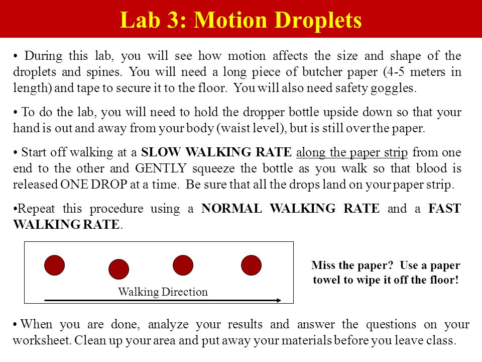 Lab 3: Motion Droplets During this lab, you will see how motion affects the size and shape of the droplets and spines. You will need a long piece of b