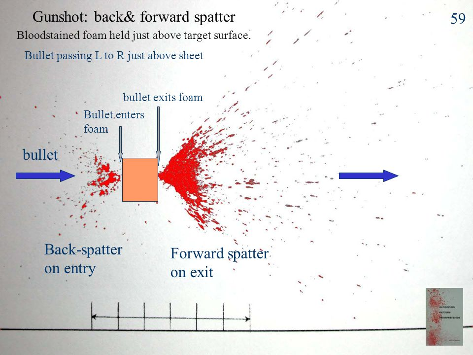 High Velocity Blood Spatter Blood source subjected to HV impact –> 100 f/s, 30 m/s Fine mist: spot size < 0.1 mm Small mass limits spread to 1 m !Some larger droplets reach further Gunshot –back-spatter from entry wound –forward spatter from exit wound High speed machinery 58