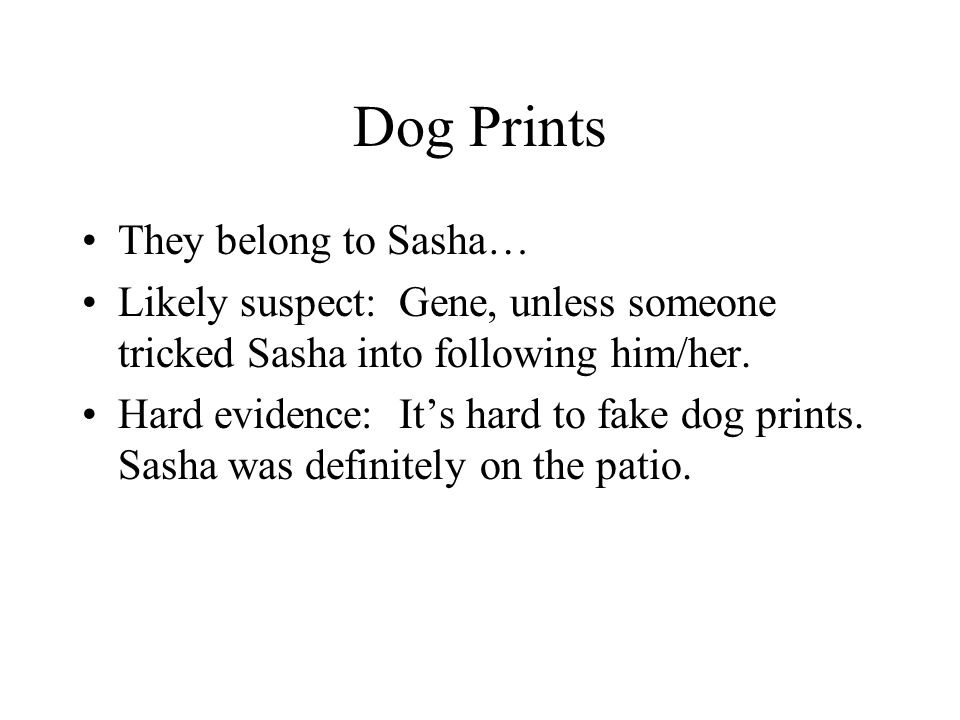 Dog Prints They belong to Sasha… Likely suspect: Gene, unless someone tricked Sasha into following him/her. Hard evidence: It's hard to fake dog print