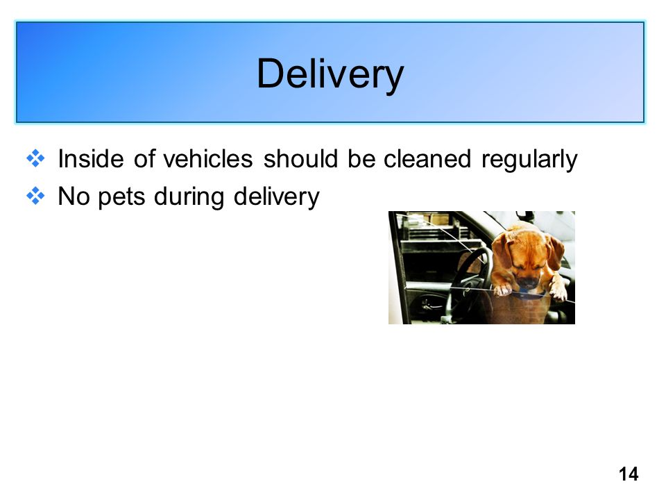 14 Delivery  Inside of vehicles should be cleaned regularly  No pets during delivery