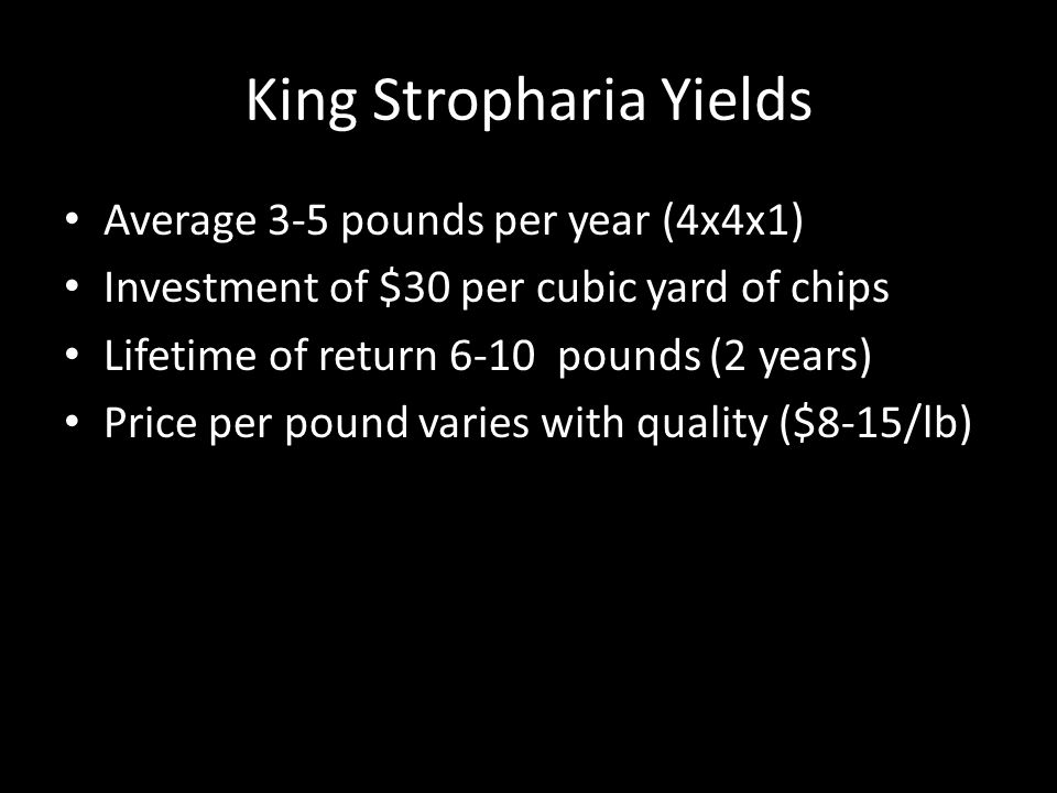 King Stropharia Yields Average 3-5 pounds per year (4x4x1) Investment of $30 per cubic yard of chips Lifetime of return 6-10 pounds (2 years) Price per pound varies with quality ($8-15/lb)