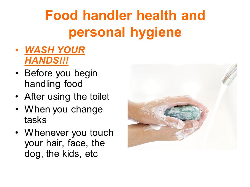 Food handler health and personal hygiene Wash with warm, clean, potable water.