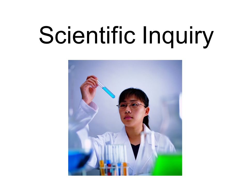 Scientists are… CURIOUS – they ask questions that make them want to investigate.