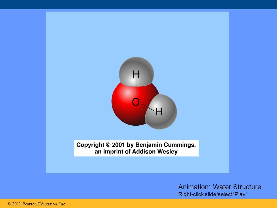 """© 2011 Pearson Education, Inc. Animation: Water Structure Right-click slide/select """"Play"""""""