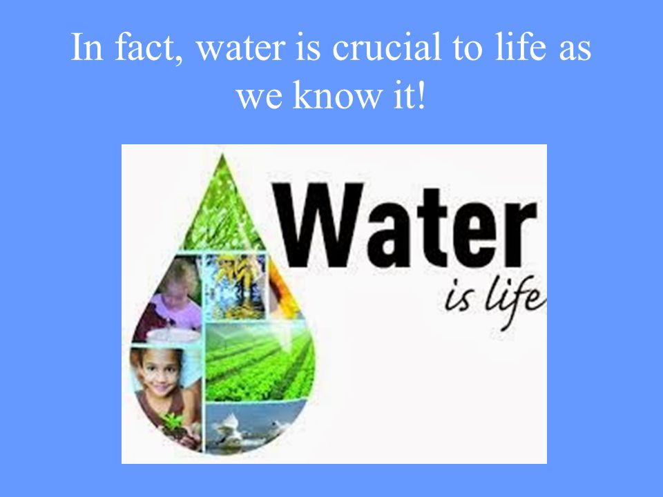 In fact, water is crucial to life as we know it!
