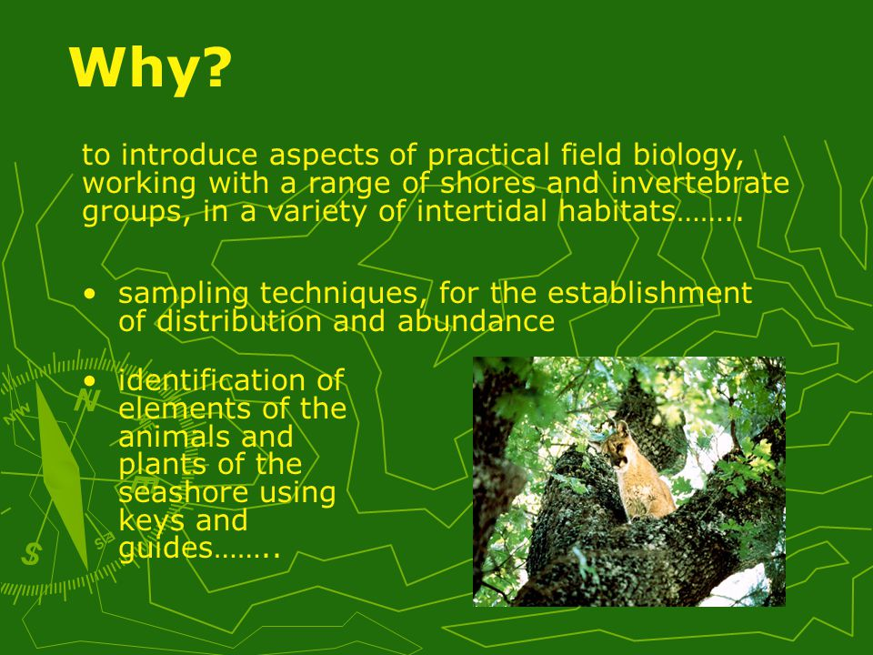 practical skill associated with the collection, handling and identification of specimens Classifications of habitats Why.