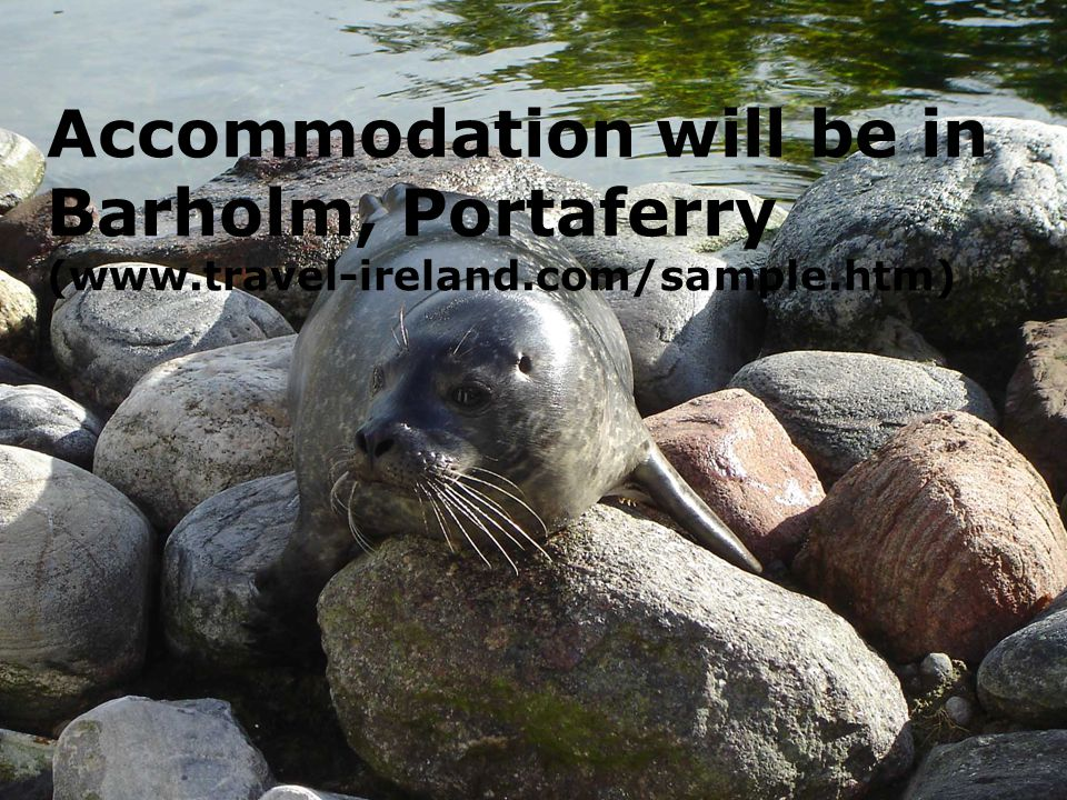 Accommodation will be in Barholm, Portaferry (www.travel-ireland.com/sample.htm)