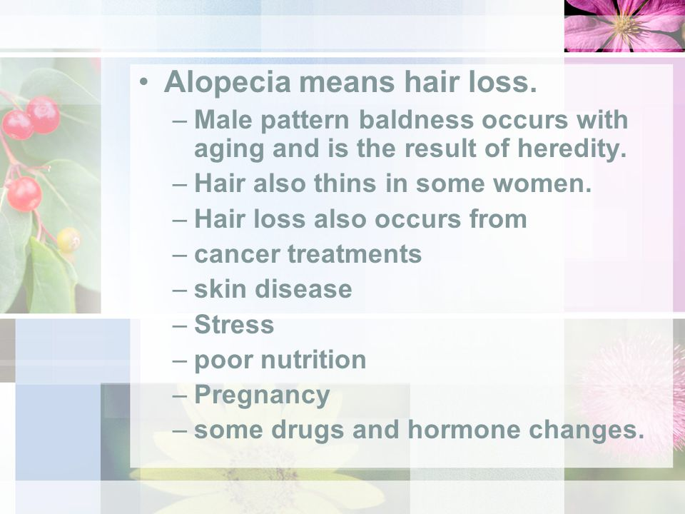 Alopecia means hair loss. –Male pattern baldness occurs with aging and is the result of heredity.