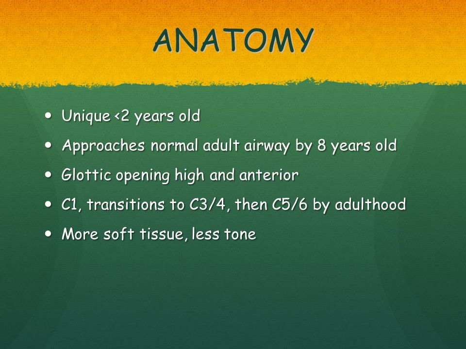 ANATOMY Unique <2 years old Unique <2 years old Approaches normal adult airway by 8 years old Approaches normal adult airway by 8 years old Glottic op