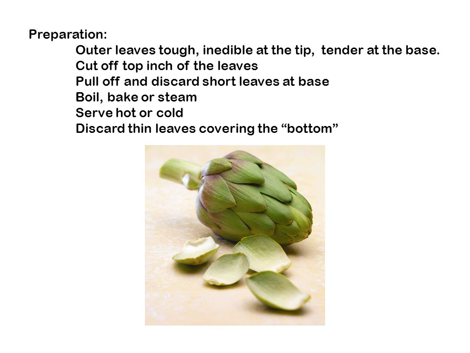Preparation: Outer leaves tough, inedible at the tip, tender at the base.