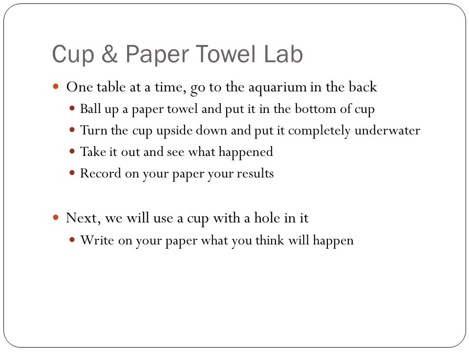 Cup & Paper Towel Lab One table at a time, go to the aquarium in the back Ball up a paper towel and put it in the bottom of cup Turn the cup upside down and put it completely underwater Take it out and see what happened Record on your paper your results Why do you think your results happened?