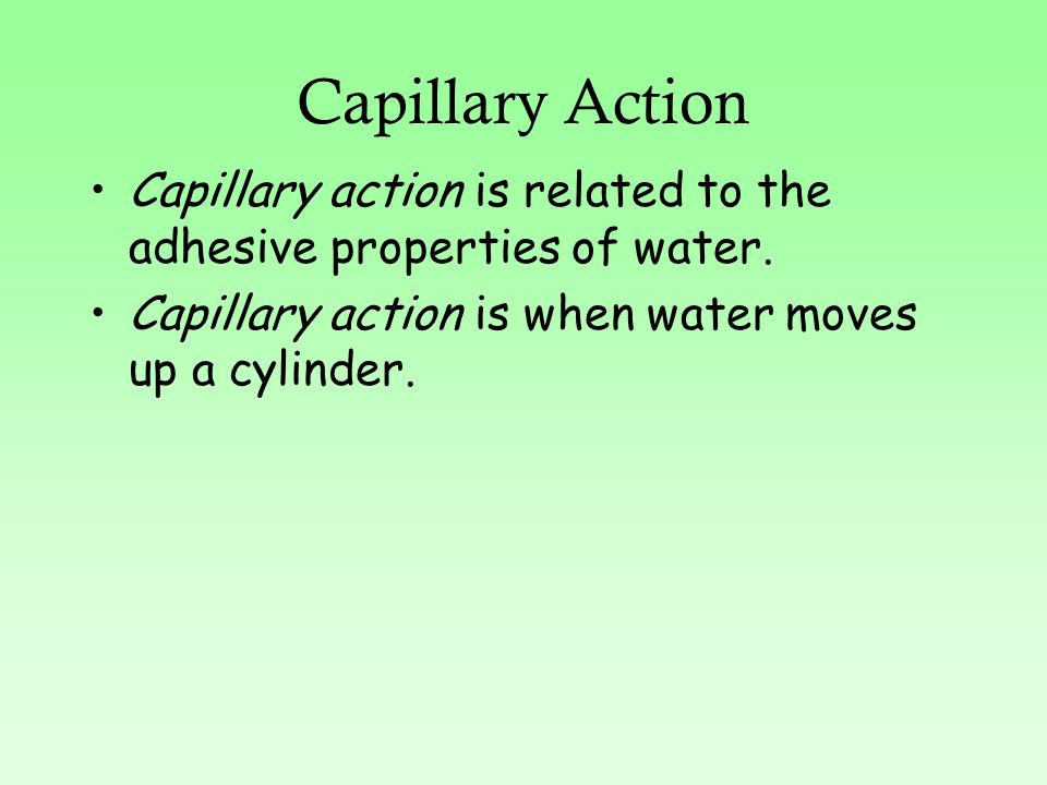 Capillary Action Capillary action is related to the adhesive properties of water.