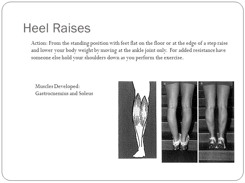 Heel Raises Action: From the standing position with feet flat on the floor or at the edge of a step raise and lower your body weight by moving at the