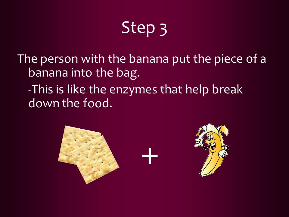 Step 3 The person with the banana put the piece of a banana into the bag. -This is like the enzymes that help break down the food. +