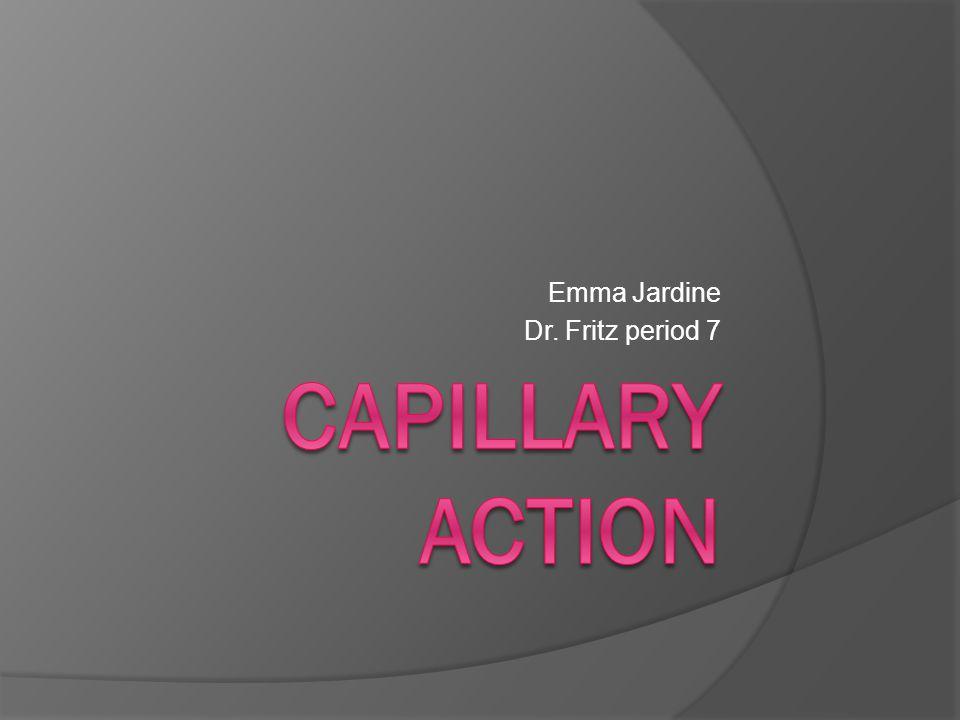 Emma Jardine Dr. Fritz period 7