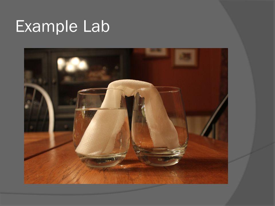 Example Lab