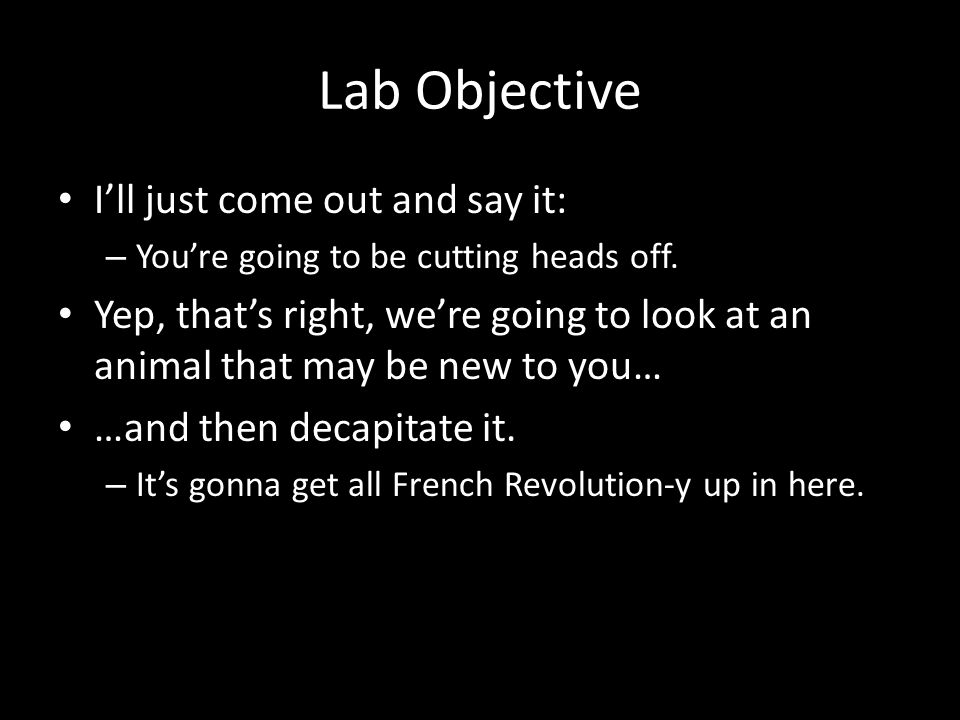 Lab Objective I'll just come out and say it: – You're going to be cutting heads off.