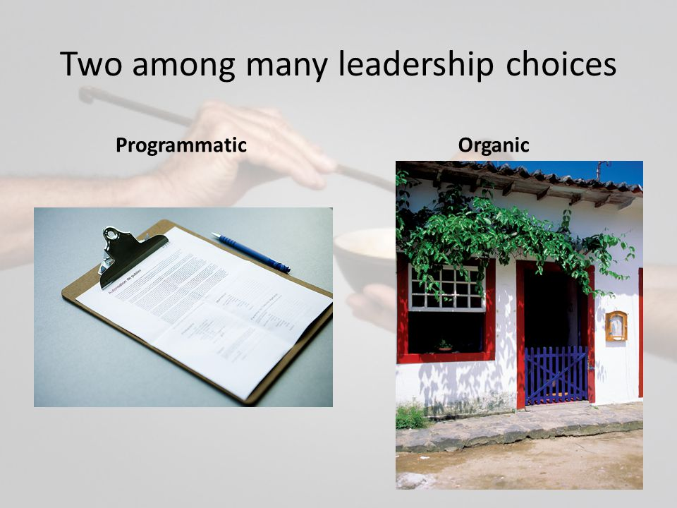 Two among many leadership choices ProgrammaticOrganic